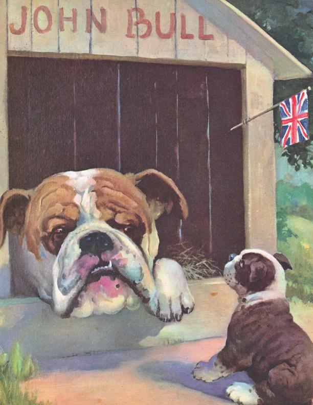 Wesley Dennis Bull Dog Illustration