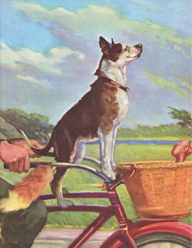 Wesley Dennis Dog Illustration