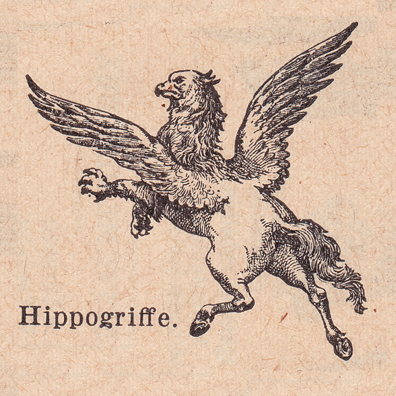 french dictionary illustrations griffin or hippogriffe