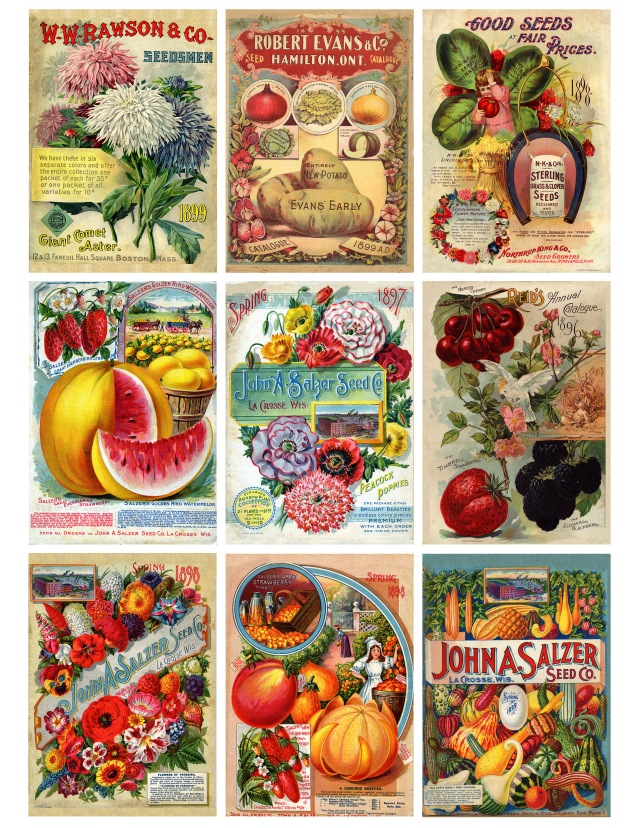 Victorian Seed Packages