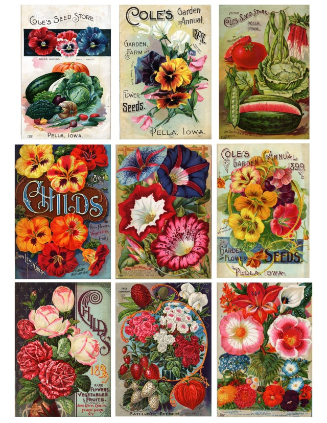 Victorian Seed Packets