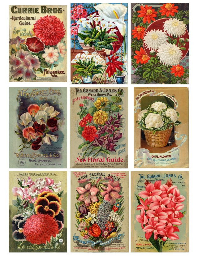 Smithsonian Seed Catalogues