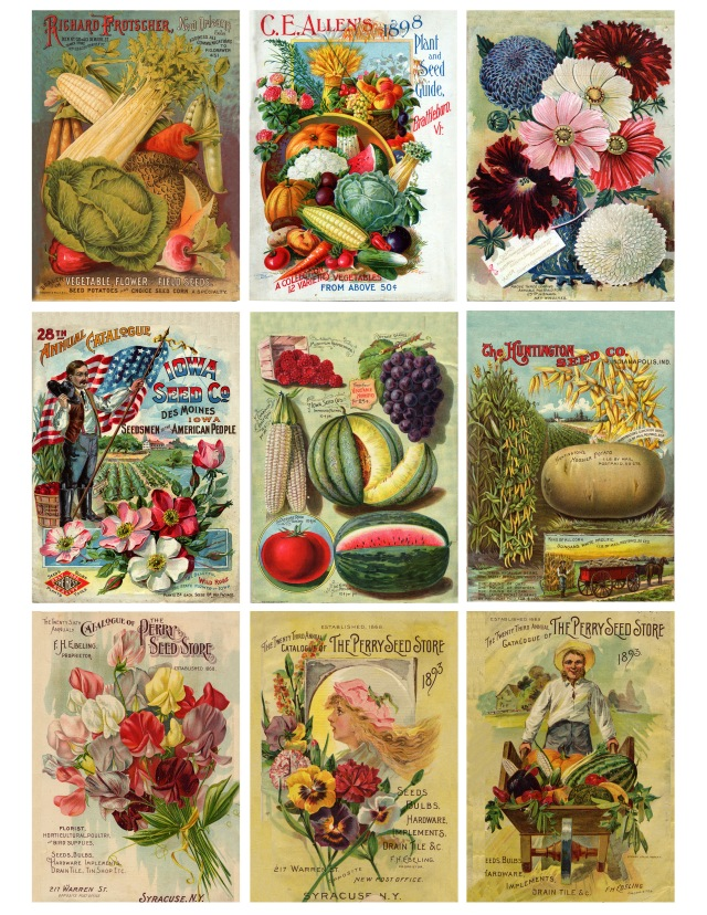 vintage seeds digital download