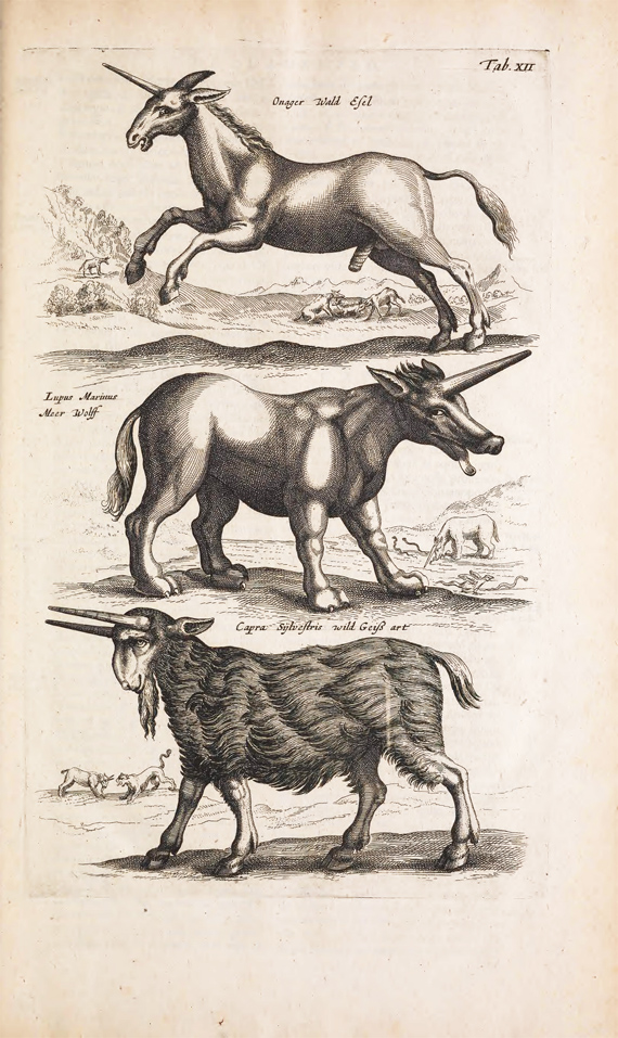 antique unicorn print